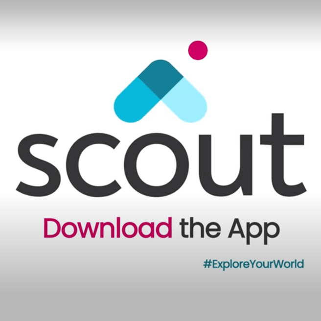 Scout Ad